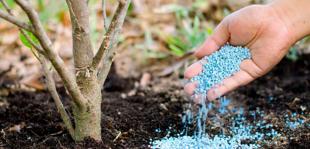 Свойства и виды фосфорных удобрений